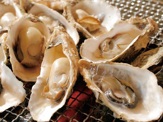 焼牡蠣ツアー イメージ